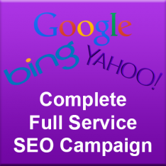 SEO Campaign (down payment)